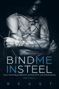 BindMeInSteel_6x9